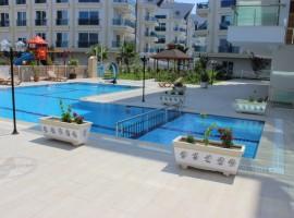 Недорогие квартиры в комплексе SARAY